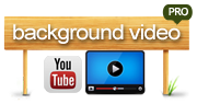 bg video logo
